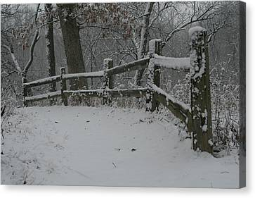 Winter Fence Trail H Canvas Print
