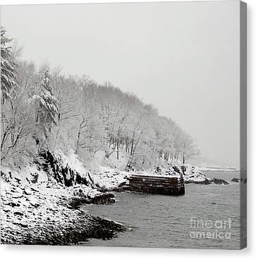 Winter Finery Canvas Print by Faith Harron Boudreau