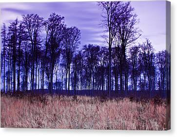 Canvas Print featuring the photograph Winter Forest At Sunset In Hungary by Gabor Pozsgai