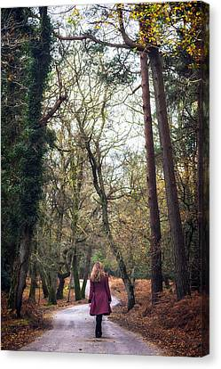 Winter Forest Canvas Print by Joana Kruse