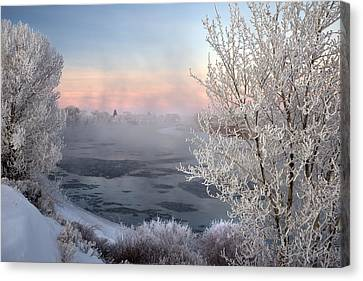 Winter Frost And Mist Canvas Print by Leland D Howard