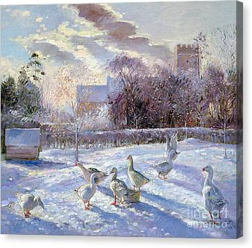 Winter Geese In Church Meadow Canvas Print