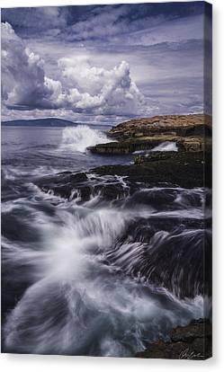 Winter Harbor At Acadia National Park Canvas Print