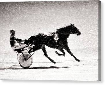 Winter Harness Racing Canvas Print by Ari Salmela