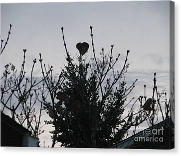 Canvas Print featuring the photograph Winter Heart On Lilac by Judyann Matthews