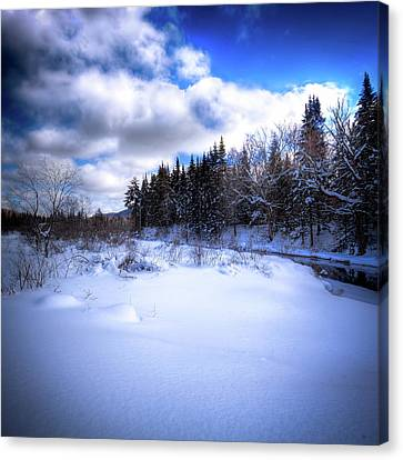 Canvas Print featuring the photograph Winter Highlights by David Patterson