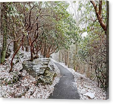 Winter Hiking Trail Canvas Print by Susan Leggett