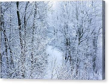 Winter Ice Storm Canvas Print