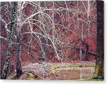 Winter In Arkansas Canvas Print by Fred Lassmann