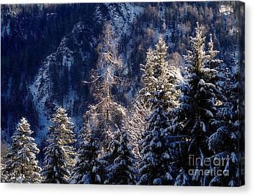 winter in Bavaria 9 Canvas Print by Rudi Prott