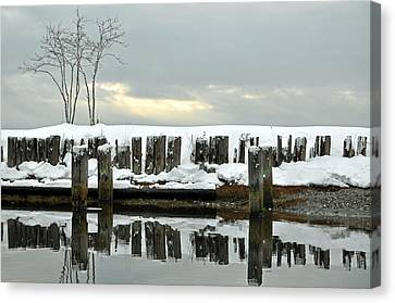 Winter In Birch Bay Canvas Print by Matthew Adair