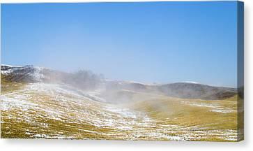 winter in spring II Canvas Print by Hyuntae Kim