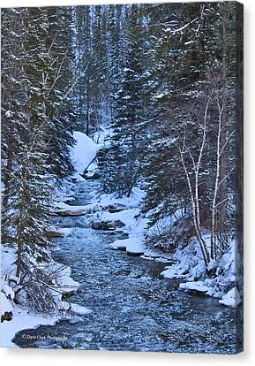Winter In The Black Hills Canvas Print by Dave Clark