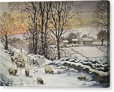 Winter In The Ribble Valley Canvas Print by Andrew Read