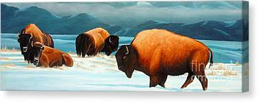 Winter In Yellowstone Valley Canvas Print