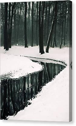 Winter Lake Canvas Print by Art of Invi