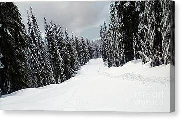 Canvas Print featuring the photograph Winter Landscape by Bill Thomson