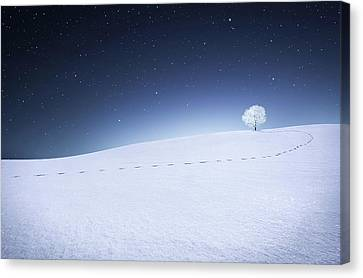Canvas Print featuring the photograph Winter Landscape by Bess Hamiti