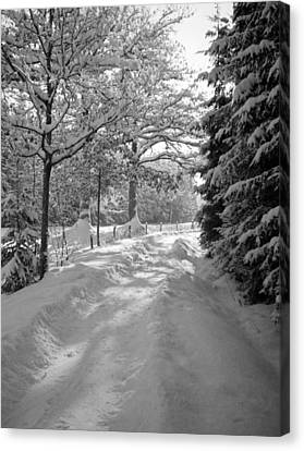 Winter Landscape  Christmas Card Canvas Print