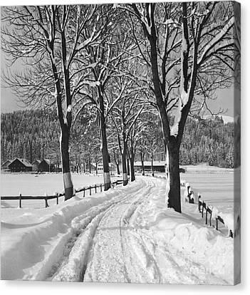 Winter Landscape Canvas Print by German School