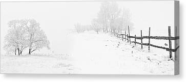 Winter Landscape - Pray For Snow Canvas Print by Celestial Images