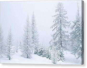 Italian Landscape Canvas Print - Winter Landscape by Unknown