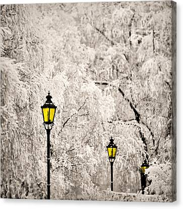 Winter Lanterns Canvas Print