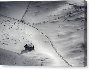 Winter Light Canvas Print by Mihail Dulu