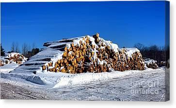 Winter Logs Canvas Print by Olivier Le Queinec