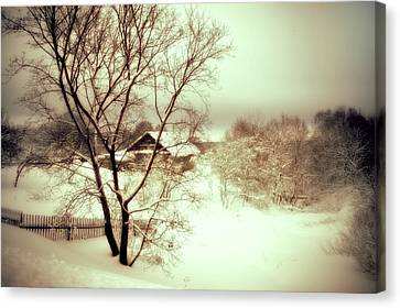 Winter Loneliness Canvas Print by Jenny Rainbow