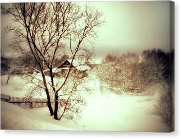 Winter Loneliness Canvas Print