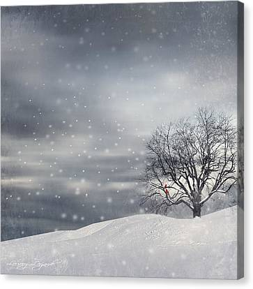 Squirrel Canvas Print - Winter by Lourry Legarde