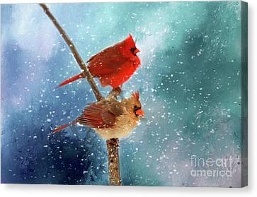 Winter Love Canvas Print by Darren Fisher