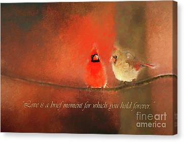 Canvas Print featuring the photograph Winter Love2 by Darren Fisher