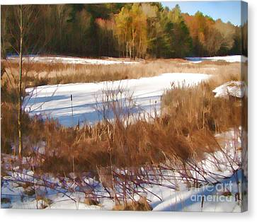 Canvas Print featuring the photograph Winter Marsh by Betsy Zimmerli