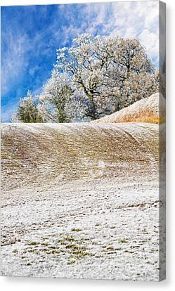 Winter Canvas Print by Meirion Matthias