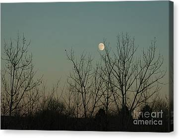 Canvas Print featuring the photograph Winter Moon by Ana V Ramirez