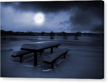 Winter Moonlight Canvas Print by Jaroslaw Grudzinski