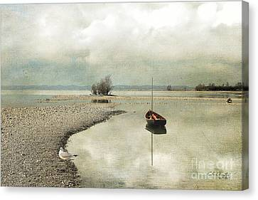 Winter Morning By The Lake Canvas Print by Chris Armytage