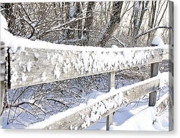 Winter Morning Canvas Print by Thomas R Fletcher