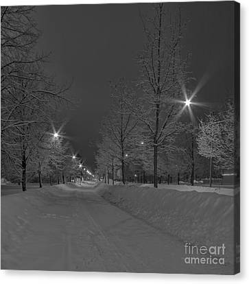 Winter Morning Canvas Print by Veikko Suikkanen