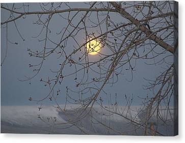 Canvas Print featuring the photograph Winter Mornings by Al Swasey