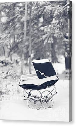 Winter Mystery Canvas Print by Edward Fielding