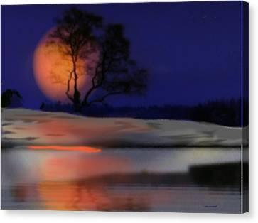 Winter Night Canvas Print by Dr Loifer Vladimir