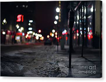 Winter Nights Canvas Print by Ian McGregor
