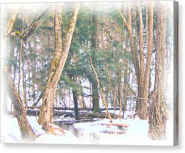 Winter Oasis Canvas Print by Debi Dmytryshyn