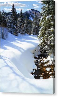 Winter On Mount Timpanogos Canvas Print