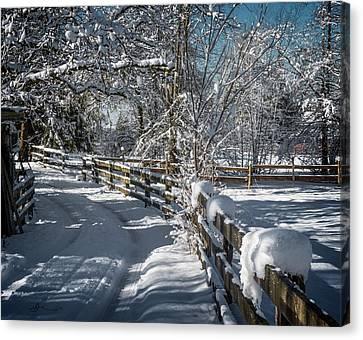Winter On Ruskin Farm Canvas Print