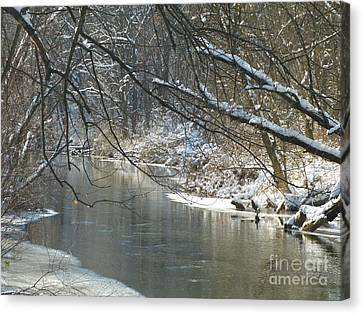 Winter On The Stream Canvas Print