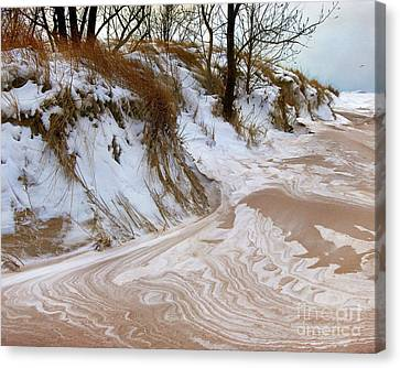 Winter Paints Canvas Print by Kathi Mirto
